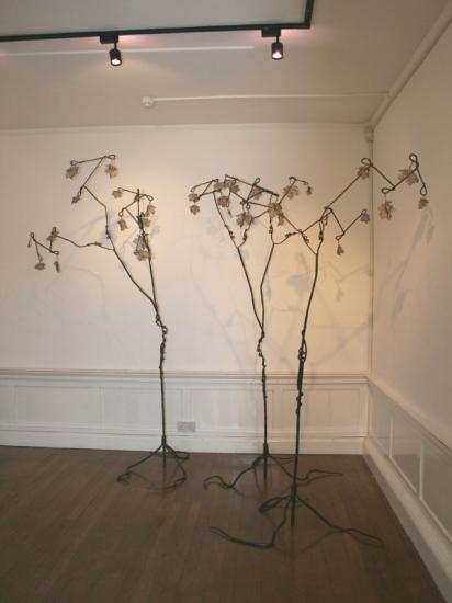 Canopy-3 trees