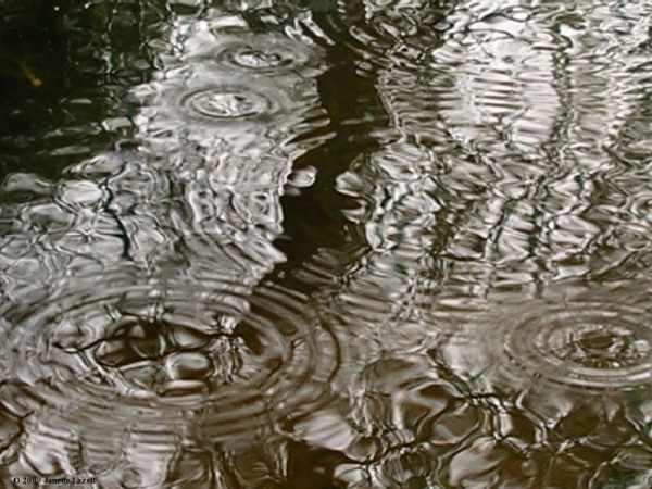 Rain Circles photograph