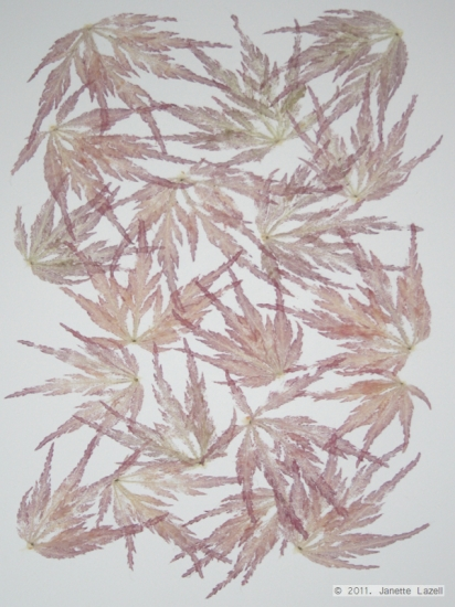 Mixed media-leaf printing - paper 2