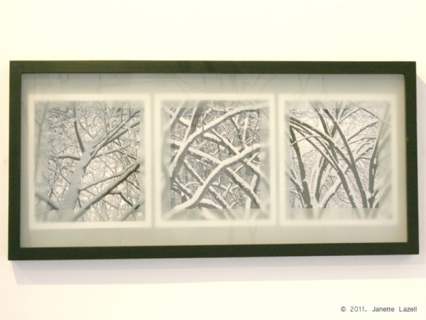 3 images of winter branches covered in snow - printed on art paper --3 winter.jpg