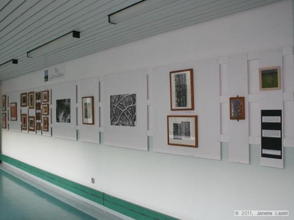 Closer-photographic exhibition